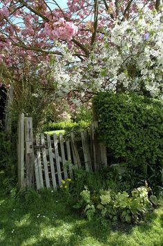 I'd love this to be my garden gate
