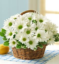 White daisies, traditional symbols of innocence and youth, bring to mind images of children happily skipping down the street with a posy of hand-picked flowers.