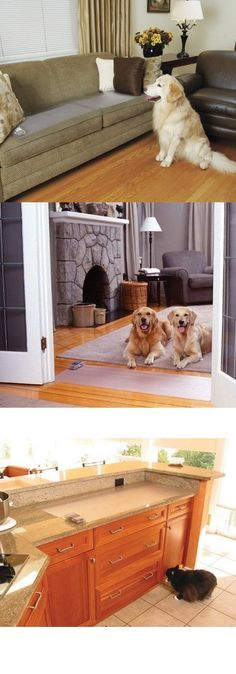 Keep Dog Off Couch With Aluminum Foil : couch, aluminum, Keeping, Furniture, Ideas, Couch,, Pets,
