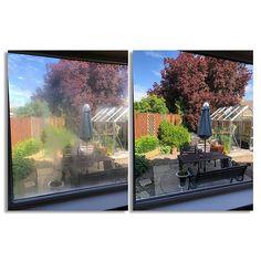 Glass Supplies, Drop, Windows, Window, Ramen