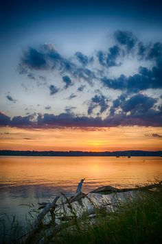 ✯ Calm And Lovely - Douglas Lake, Tennessee Pretty Pictures, Cool Photos, Beautiful World, Beautiful Places, Douglas Lake, Calming Pictures, Sky Watch, Serenity Now, Beautiful Sunrise