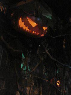 evil scarecrow | PUMPKINROT.COM: What's Brewing: Pumpkin Headed