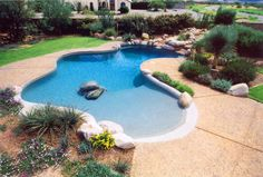 Custom free form pool by Patio Pools and Spas.