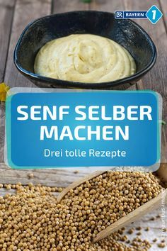 Senf selber machen: Drei tolle Senf-Rezepte You can easily make mustard yourself. We have three great recipes ready! A classic, a fruity and a mustard recipe with honey. Honey Recipes, Baby Food Recipes, Cooking Recipes, Raclette Recipes, Chutneys, Easy Healthy Recipes, Great Recipes, Mustard Recipe, Morning Food