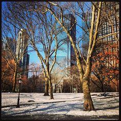Central Park in February 2013 New York, NY