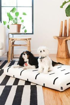 White Modern Mud Cloth Dog Bed from Laylo Pets - Image via Etsy. Bohemian Chic Home, Bohemian Chic Fashion, Modern Bohemian, Boho, Bohemian Interior Design, Animals Images, Dog Beds, Pet Products, Dog Friends