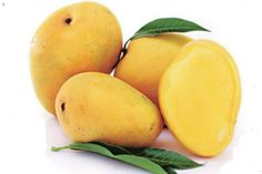 Health Benefits of Mango are countless. Mango is a fruit full of nutritional values. It has high fiber content, vitamins, minerals etc. In this post you can read about 15 amazing benefits of mango. Mango Health Benefits, Fruit Benefits, Mango Nutrition Facts, Fresco, Baby Food Recipes, Healthy Recipes, Best Weight Loss Foods, Alternative Health, Tela