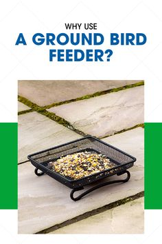 The term ground feeder can sometimes be misleading. To ground feed does not simply mean that you spread bird seed out on the ground. A ground bird feeder can also refer to a flat structure that is at least one foot off the ground. Structured ground bird feeders help the seed from blowing away and it also provides the feeding birds with protection from other wild predators like Hawks.