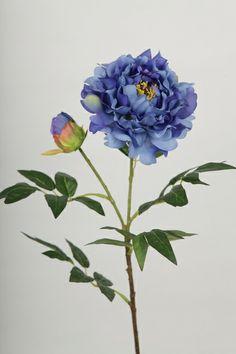 http://prosilkflower.com/UploadFiles/Others/20121007085009_66817.jpg