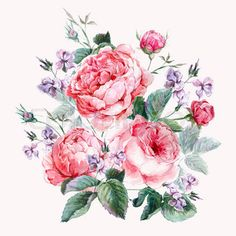 Classical vintage floral greeting card, watercolor bouquet of English roses, beautiful watercolor illustration | Stock Photo | Colourbox on Colourbox