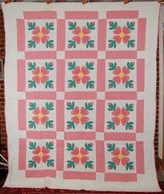 Large Vintage 30's Ohio Rose of Sharon Applique Antique Quilt ~NICE QUILTING!