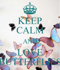 KEEP CALM AND LOVE BUTTERFLIES - KEEP CALM AND CARRY ON Image Generator