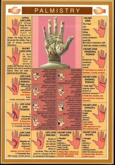 Palmistry and Palm Reading Secrets - PositiveMed    -   http://positivemed.com/2013/02/23/palmistry/