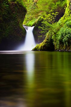 Punch Bowl Falls, Eagle Creek hiking trail. 12 mi round trip. This is my goal hike for the year! ~k