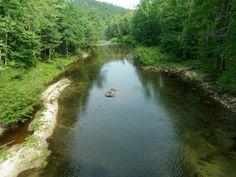 http://www.nc-flyfishing.com/images/phocagallery/Wilson-Creek/p5250085.jpg