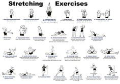 Stretching exercises illustrations