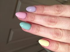 Spring colours- Hollywood collection