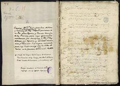 Correspondencia con Felipe IV sobre la Paz de los Pirineos, 1659. Méndez de Haro, Luis, Marqués del Carpio 1598-1661 — Manuscrito — 1601-1700?