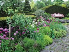 Highgrove Gardens: lovely allium in shades of purple