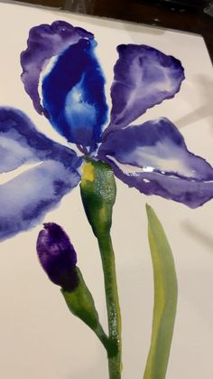 Loose painting iris watercolor Watercolor Pencil Art, Watercolor Flowers Tutorial, Abstract Watercolor, Watercolor Illustration, Iris Art, Iris Painting, Watercolor Paintings For Beginners, Guache, Abstract Flowers