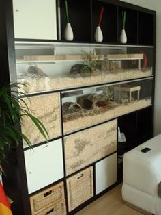 IKEA hamsters... mine would come complete with a caretaker/cage-cleaner... just sayin'