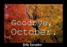 """Never say """"goodbye"""" because you know you will see it the exact same time next year.  Until then.....vh"""