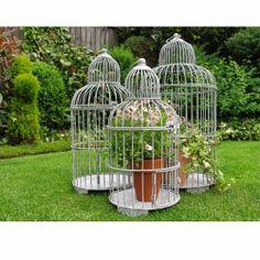 Bird cage planter ideas