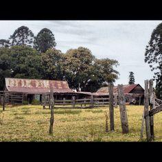 Old Australian Sheep Farm