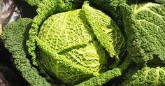 Was reift wann – regionales Obst und Gemüse im Februar | #smarticular