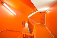 Edificio de madera para viviendas sociales  http://ventacasasdemadera.com/   #madrid #casademadera #madera #casaspersonalizadas #ventacasasdemadera