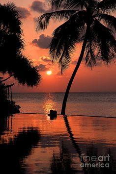 ✯ Pink Maldives Sunset