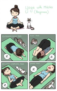 Yoga is usuallyso relaxing, I tend to fall asleep from time to time. Hey everyone, my comics will be featured in an anthology project: LAUNCHPARTY along. Yoga with Mikiko Cute Funny Animals, Funny Cute, Cute Cats, Funny Kittens, Life Comics, Cat Comics, Funny Cartoons, Funny Comics, Funny Memes