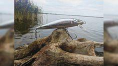Удачная рыбалка на щуку в октябре. Kosadaka ZLN XS 90F. Отчет с рыбалки