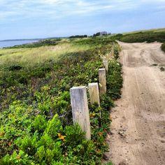 Wauwinet :: Nantucket :: Morning walk