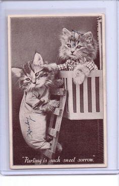 VINTAGE DRESSED CATS ROMEO & JULIETTE POSTCARD FREES 1932 COPYRIGHT | eBay