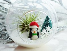 Items similar to Christmas Penguin Terrarium ~ Little Penguin with Santa Hat ~ Glass Terrarium Kit w Tillandsia AirPlant - Christmas Decor - Gift Idea on Etsy Dollar Tree Christmas, Noel Christmas, Diy Christmas Ornaments, Christmas Projects, Holiday Crafts, Globe Crafts, Hanging Glass Terrarium, Retro Christmas Decorations, Decoration Originale