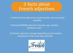 Discover everything you need to know about French adjectives in this comprehensive lesson.
