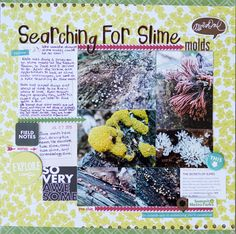 Scrapbooking Ideas for Pages About Taking A Walk | Marcia Fortunato | Get It Scrapped
