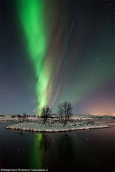 Aurora Borealis at Þingvellir National Park, Iceland