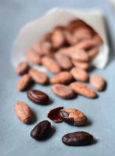 Cacahualt tak nazywali kakao Aztekowie, podawali je na wystawnych ucztach…