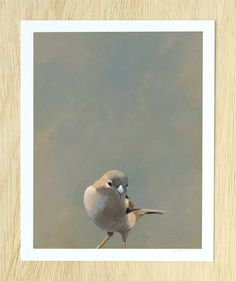 """Calling In Sick To Watch Full Seasons Of """"The Golden Girls"""" On DVD...8 x 10 Art Print - Bird - Animal - Nature - Gift - Sparrow"""