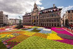 More than 173,000 pots of plants and herbs form a flower carpet in front of the city hall in Antwerp, Belgium, on Monday, June 8, 2015. To celebrate…