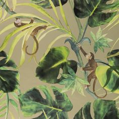 Monkey Business - Gilver wallpaper, from the Colony collection by Clarke and Clarke
