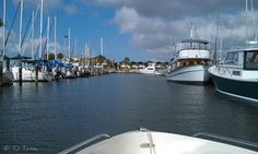 Dunedin Marina, FL
