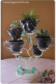 #DIY mini terrarium garden made using a candelabra and glass punch cups from #Goodwill!