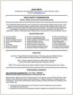 Cv Format For Ngo Job In Bangladesh Resume Template Mechanical Engineer Resume Resume Template Word