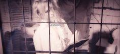 Kamijo-  Mademoiselle pv ( scans 3)    #Mademoiselle#kamijo#Versailles Philharmonic Quintet#visualkei#angel face#vocal#scans#video#edit#music video#edition#gekkakou#jrock#pv#japan