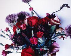 zzzze — Nobuyoshi Araki  Flowers and Jamorinsky, 2005...