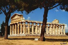 Temple of Athena -  Greek Temple (yes Greek, not Italian)  at Paestum, Italy.   Saw it last year - gorgeous!