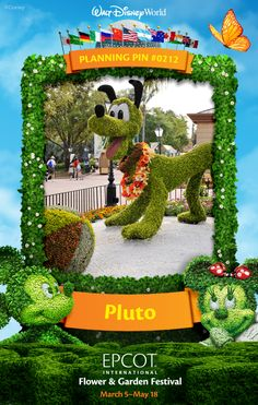 Walt Disney World Planning Pins: Pluto Topiary